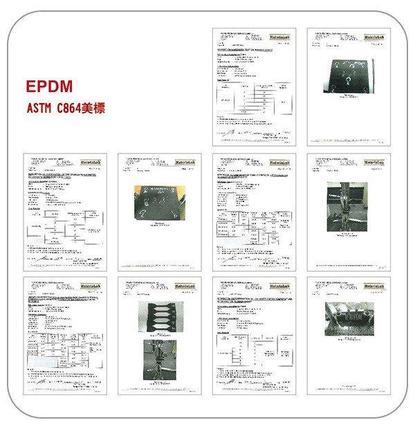 ASTM C864(EPDM)